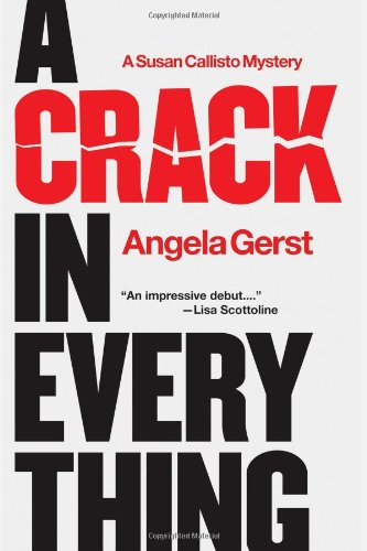 A Crack in Everything: A Susan Callisto Mystery 9781590589441