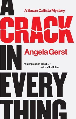 A Crack in Everything: A Susan Callisto Mystery 9781590589458