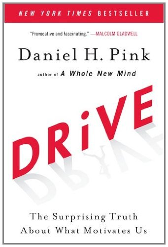 Drive: The Surprising Truth about What Motivates Us 9781594484803