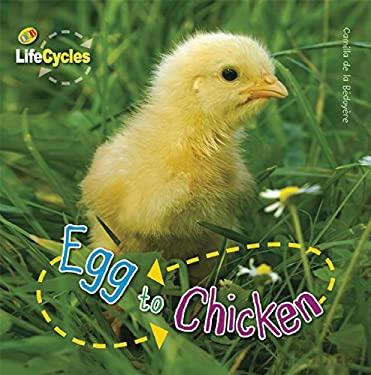 Egg to Chicken 9781595667410