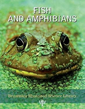 Fish and Amphibians 9781593393892