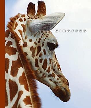 Giraffes 9781592964963