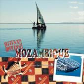 Gone Diving Mozambique 7338937