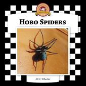Hobo Spiders 7324221