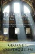 Holy Spirit, Make Your Home in Me: Biblical Meditations on Receiving the Gift of the Spirit 9781593251284