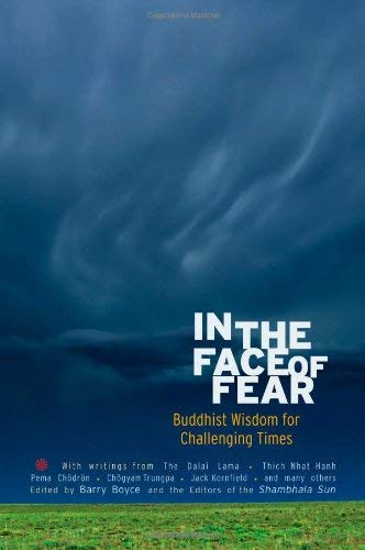 In the Face of Fear: Buddhist Wisdom for Challenging Times 9781590307571