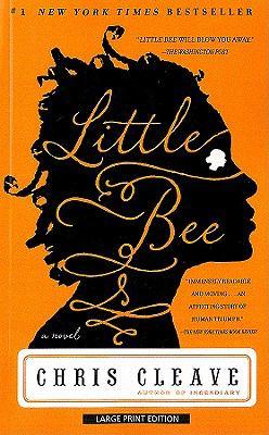Little Bee 9781594134975