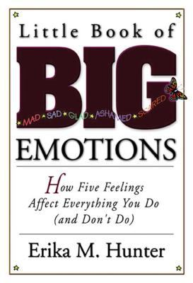 Little Book of Big Emotions: How Five Feelings Affect Everything You Do (and Don't Do) 9781592850792