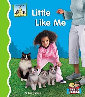 Little Like Me 9781596793941