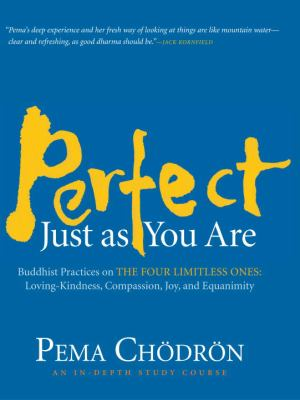 Perfect Just as You Are: Buddhist Practices on the Four Limitless Ones: Loving-Kindness, Compassion, Joy, and Equanimity 9781590306284
