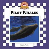 Pilot Whales 7324237