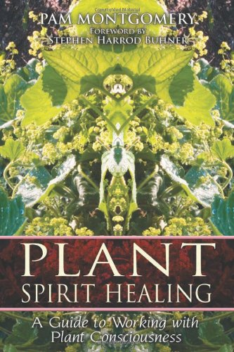 Plant Spirit Healing: A Guide to Working with Plant Consciousness 9781591430773