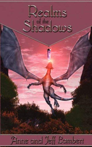 Realms of the Shadows 9781594260322
