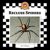 Recluse Spiders 7324222
