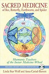 Sacred Medicine of Bee, Butterfly, Earthworm, and Spider: Unexpected Teachers of the Instar Medicine Wheel