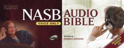 Stephen Johnston Bible-NASB-Voice Only 9781598561302