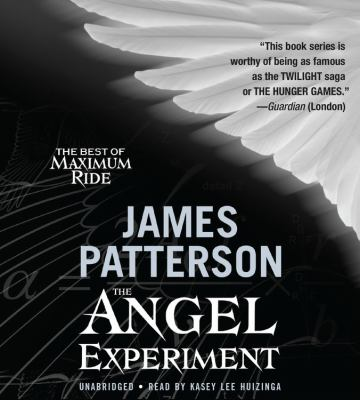 The Angel Experiment 9781594830488