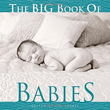 The Big Book of Babies 9781599620411