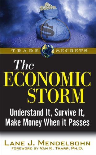 The Economic Storm: Understand It, Survive It, Make Money When It Passes 9781592803804