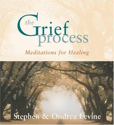 The Grief Process: Meditations for Healing [With Study Guide] 9781591794011
