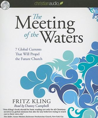 The Meeting of the Waters: 7 Global Currents That Will Propel the Future Church 9781596440616