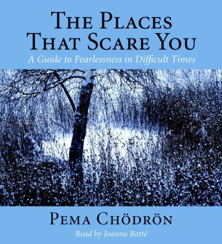 The Places That Scare You: A Guide to Fearlessness in Difficult Times 9781590305850