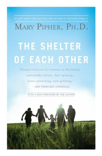 The Shelter of Each Other: Rebuilding Our Families 9781594483721