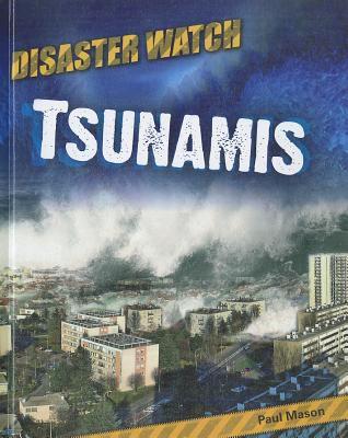Tsunamis 9781599204260