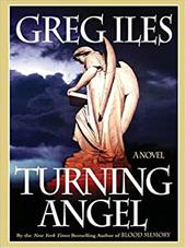 Turning Angel 7329097