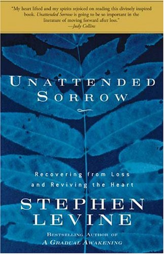 Unattended Sorrow: Recovering from Loss and Reviving the Heart 9781594863813