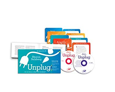Unplug: For an Hour, a Day, or a Weekend 9781591796381