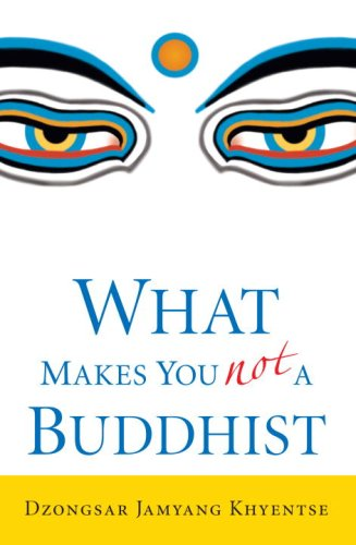 What Makes You Not a Buddhist 9781590305706