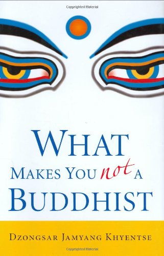What Makes You Not a Buddhist 9781590304068