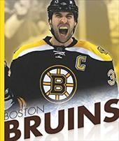Boston Bruins 10789454