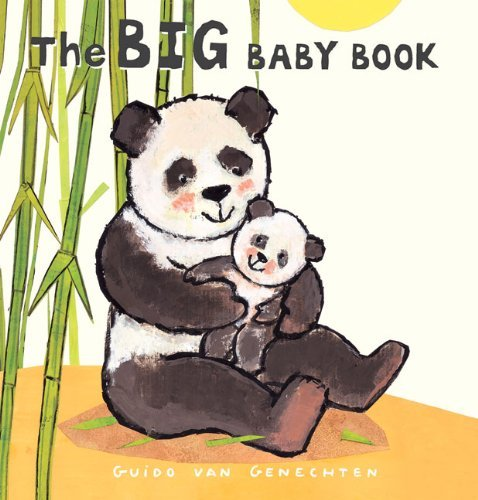 The Big Baby Book 9781605370798