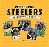 Pittsburgh Steelers 11321834