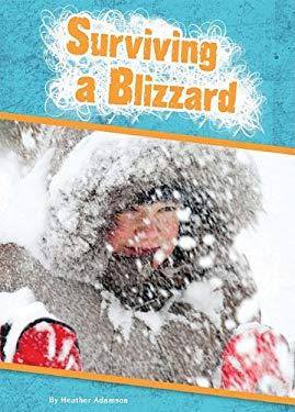 Surviving a Blizzard 9781607531470