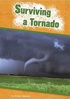 Surviving a Tornado 9781607531524