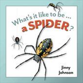A Spider? 14168952
