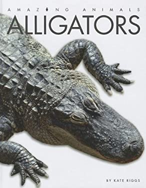 Alligators 9781608181049