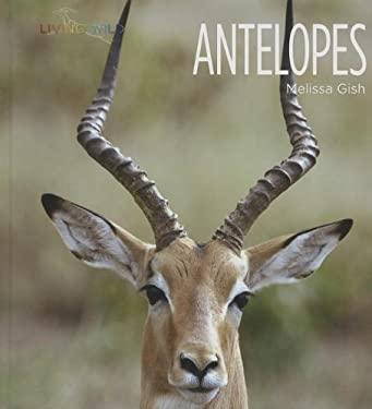 Antelopes (Living Wild)