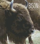 Bison 9781608180776