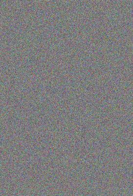 Cape Bulbs 9781604691795