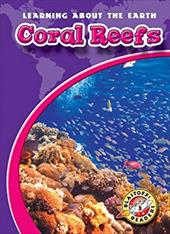 Coral Reefs 7363652
