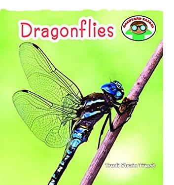 Dragonflies 9781608702442