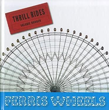 Ferris Wheels 9781608181131