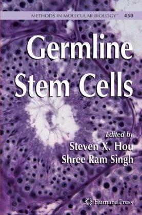 Germline Stem Cells