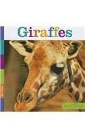 Giraffes 9781608182763