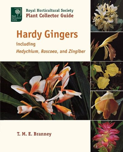 Hardy Gingers, Including Hedychium, Roscoea, and Zingiber 9781604691733