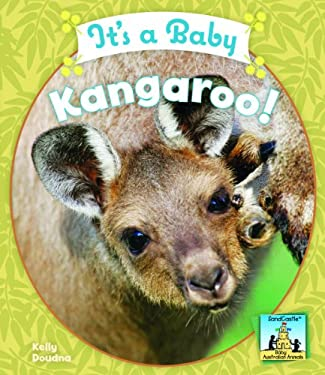 It's a Baby Kangaroo! 9781604535761